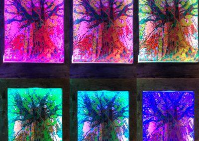 Farbdurchlauf Baum